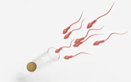 引起子宫内膜薄的原因是什么?能否通过做试管婴儿助孕?